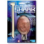 4M Dig a Glow Shark Tooth