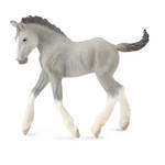 Collecta - Shire Horse Foal Grey