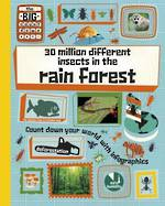 30 million different insects in the rain forest by Paul Rockett