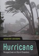 Disaster Dossiers - Hurricane by andrew Langley