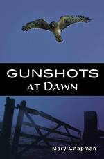 Shades 2.0 - Gunshots at dawn by Mary Chapman