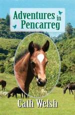 Adventures in Pencarreg