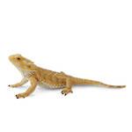 CollectA Bearded Dragon Lizard