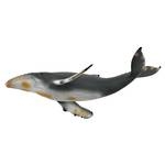 CollectA Humpback Whale