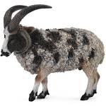 CollectA Jacob Sheep