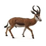 CollectA Springbok