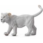 CollectA White Lion Cub Walking