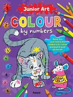 Junior Art Colour by Numbers Cat
