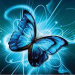 Diamond Art Butterfly Glitz Dotz