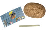 Discover Science Dino Egg Dig Out