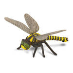 CollectA Golden-Ringed Dragonfly 88350