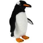 Sound Bird Gentoo Penguin