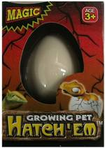 Hatching Dinosaur Egg - Small