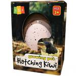 Hatching Kiwi Egg - Large