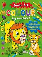 Junior Art Colour by Numbers Lion