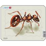 Larsen Puzzle Insect Ant