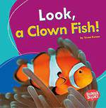 Look, A Clown Fish