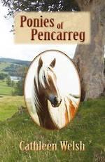 Ponies of Pencarreg