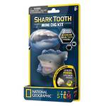 Shark Tooth Mini Dig Kit