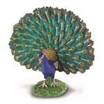 Collecta - Peacock
