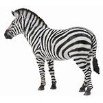 Collecta - Common Zebra