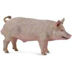 Collecta - Boar