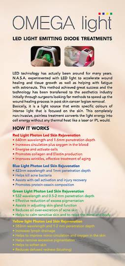 Omega LED DL flyers 50pk