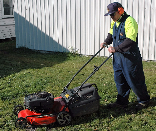 Hutt Wellington Lawn Services Pest control Tree services Carpet cleaning Fencing