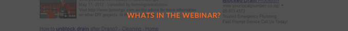 whats in webinar